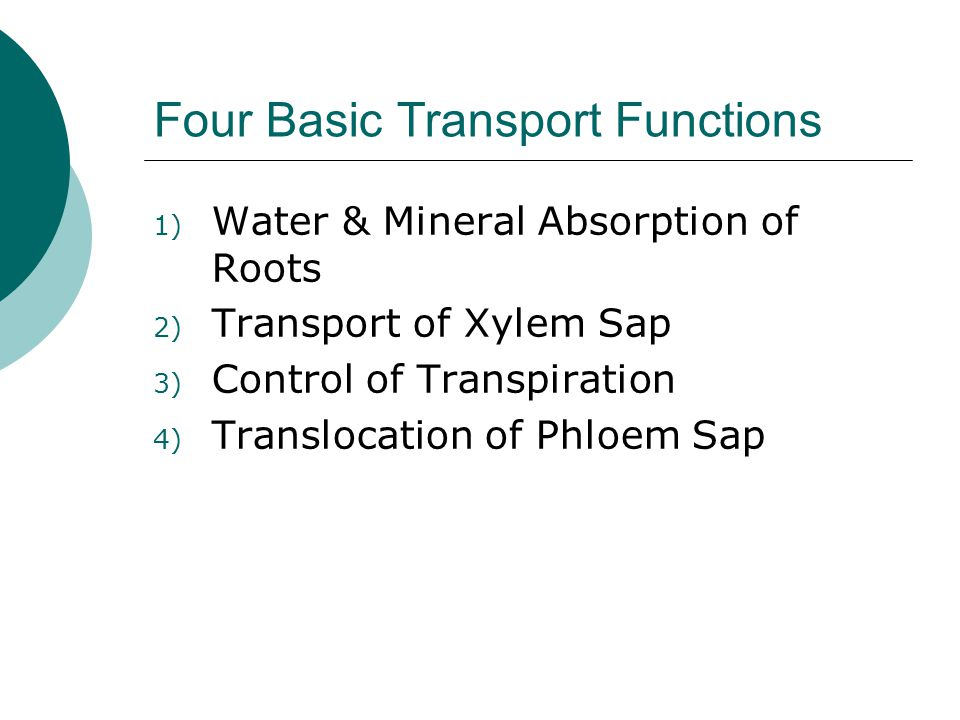 Four Basic Transport Functions