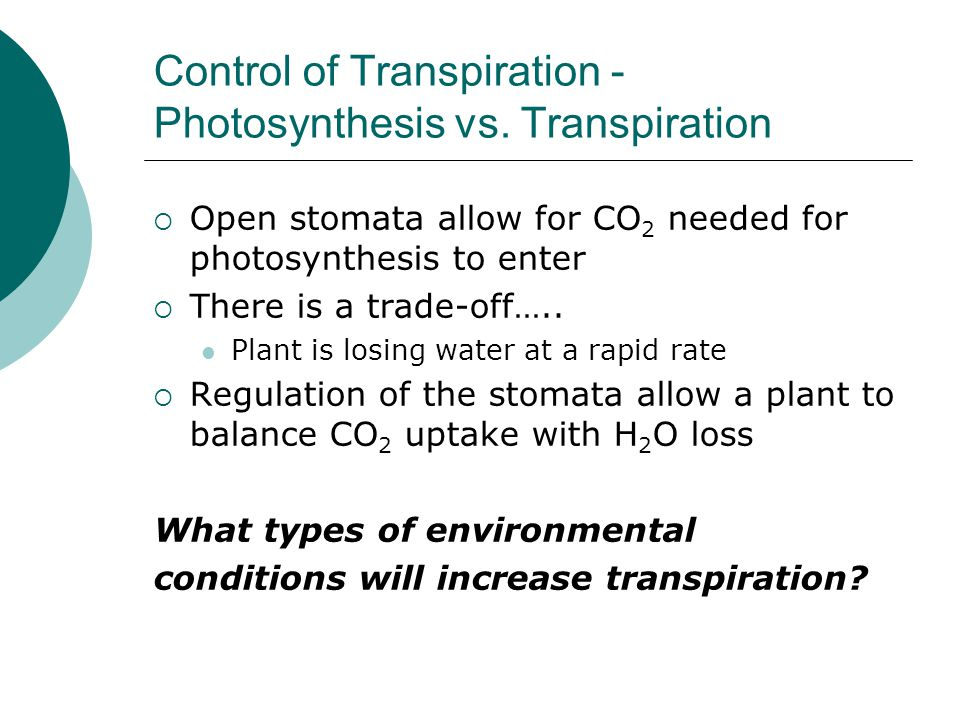 Control of Transpiration - Photosynthesis vs. Transpiration