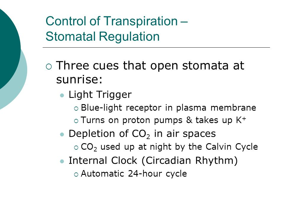 Control of Transpiration – Stomatal Regulation