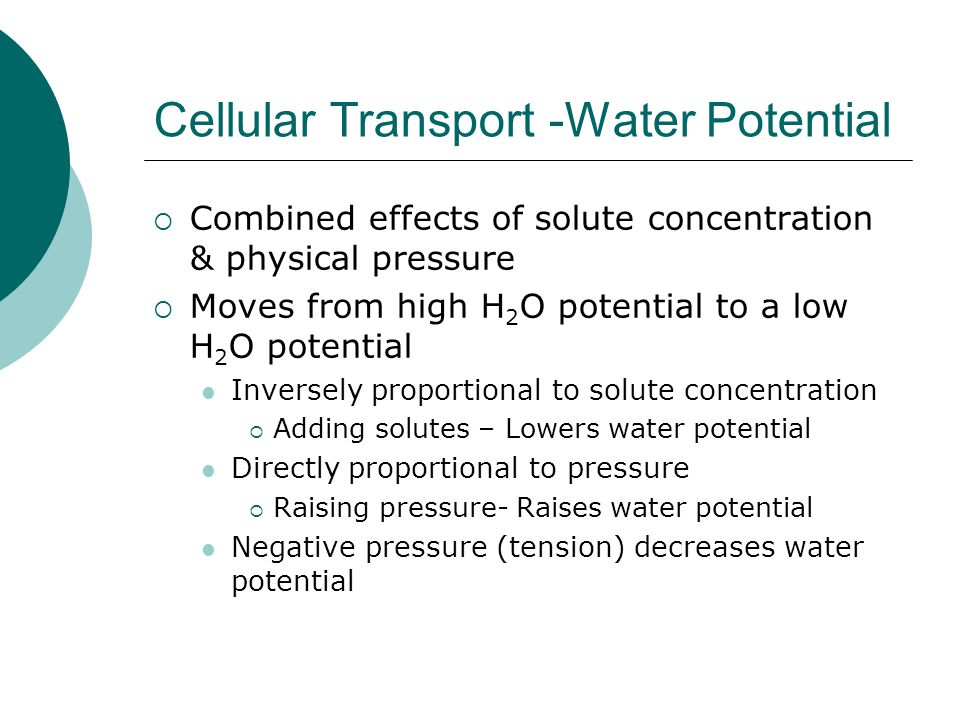 Cellular Transport -Water Potential
