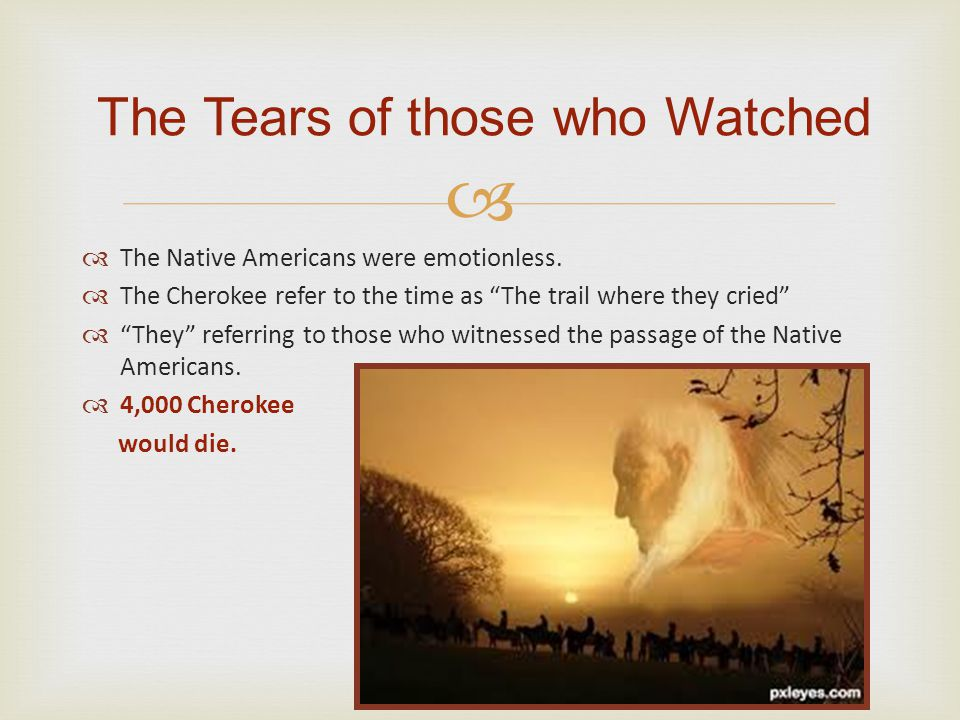 The Tears of those who Watched