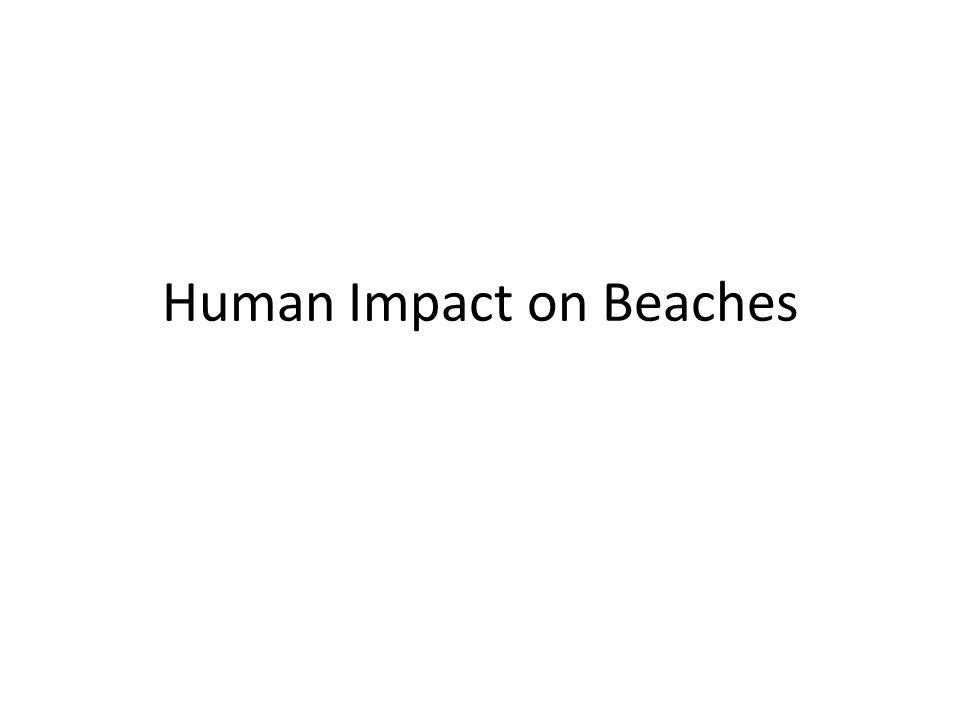 Human Impact on Beaches