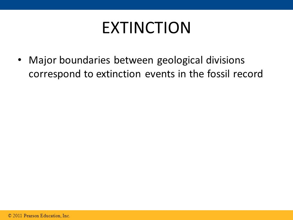 EXTINCTION Major boundaries between geological divisions correspond to extinction events in the fossil record.