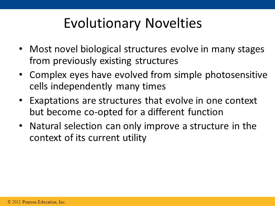 Evolutionary Novelties
