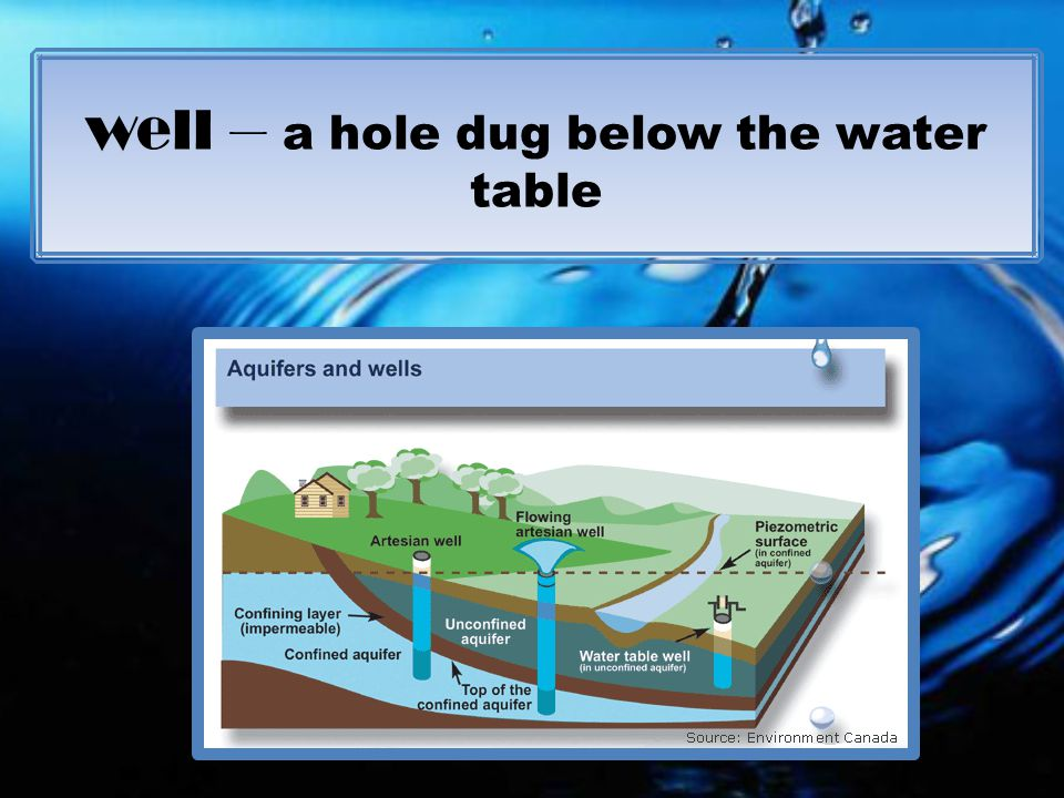 well – a hole dug below the water table
