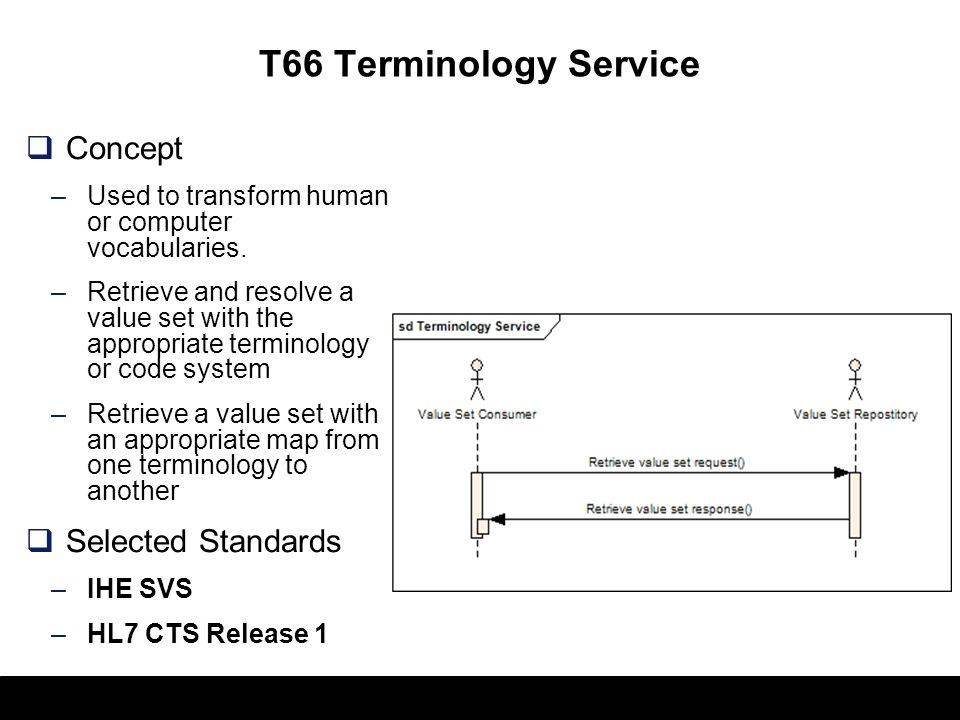 T66 Terminology Service Concept Selected Standards