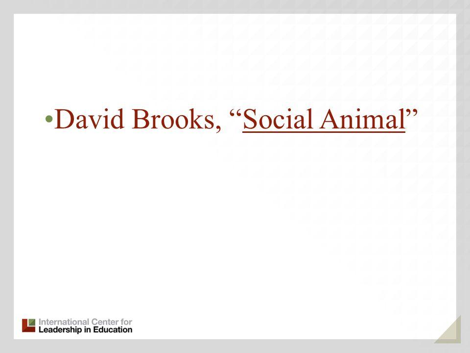 David Brooks, Social Animal