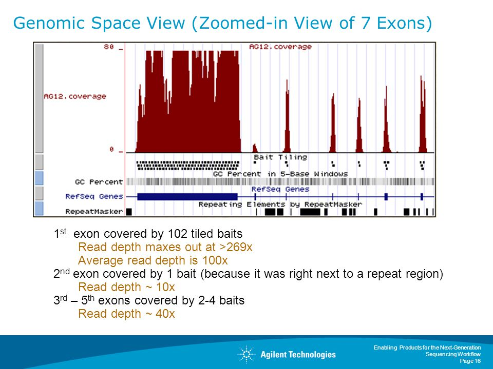 Genomic Space View (Zoomed-in View of 7 Exons)