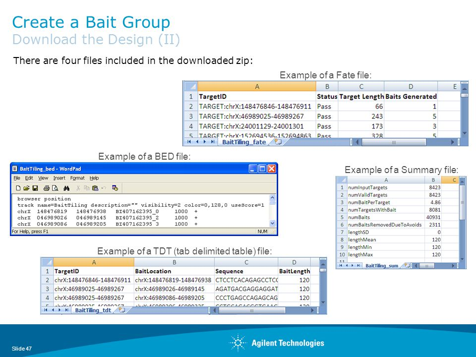 Create a Bait Group Download the Design (II)