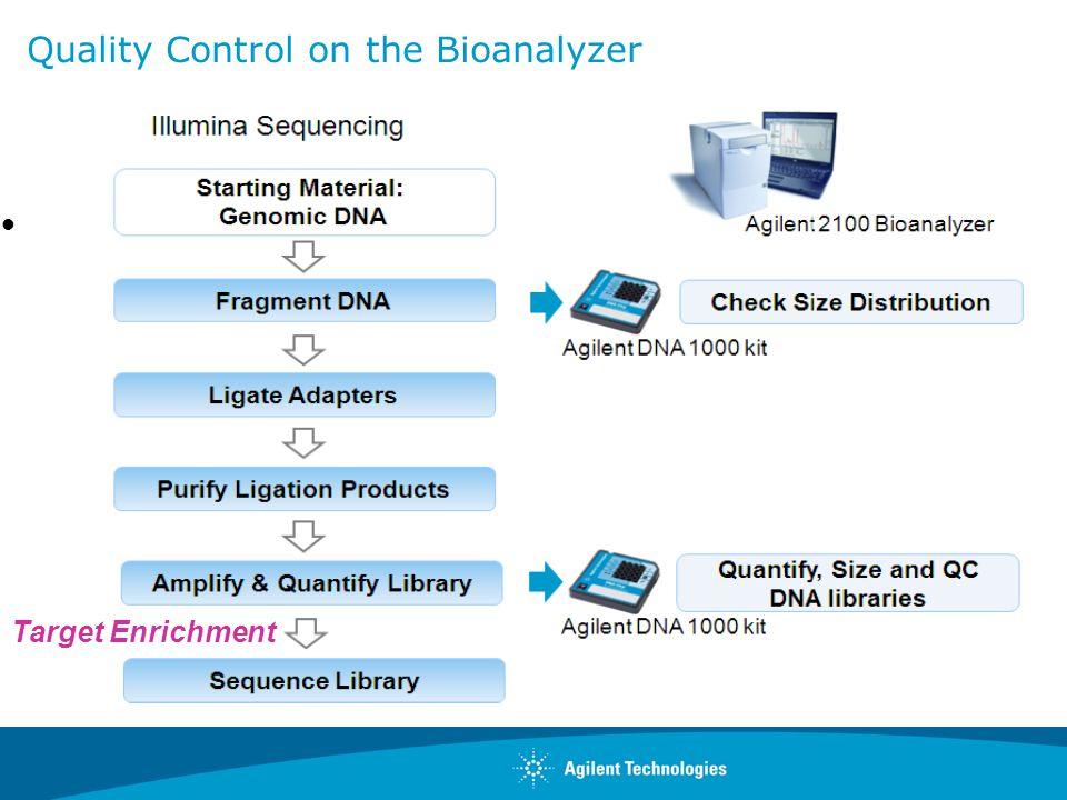 Quality Control on the Bioanalyzer