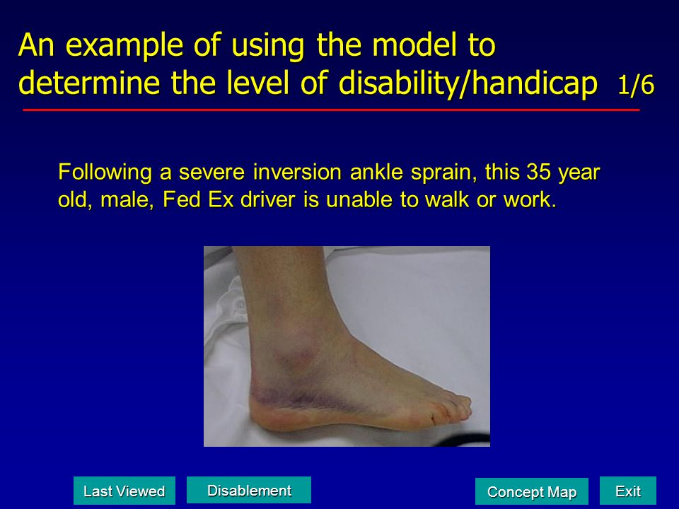 An example of using the model to determine the level of disability/handicap 1/6