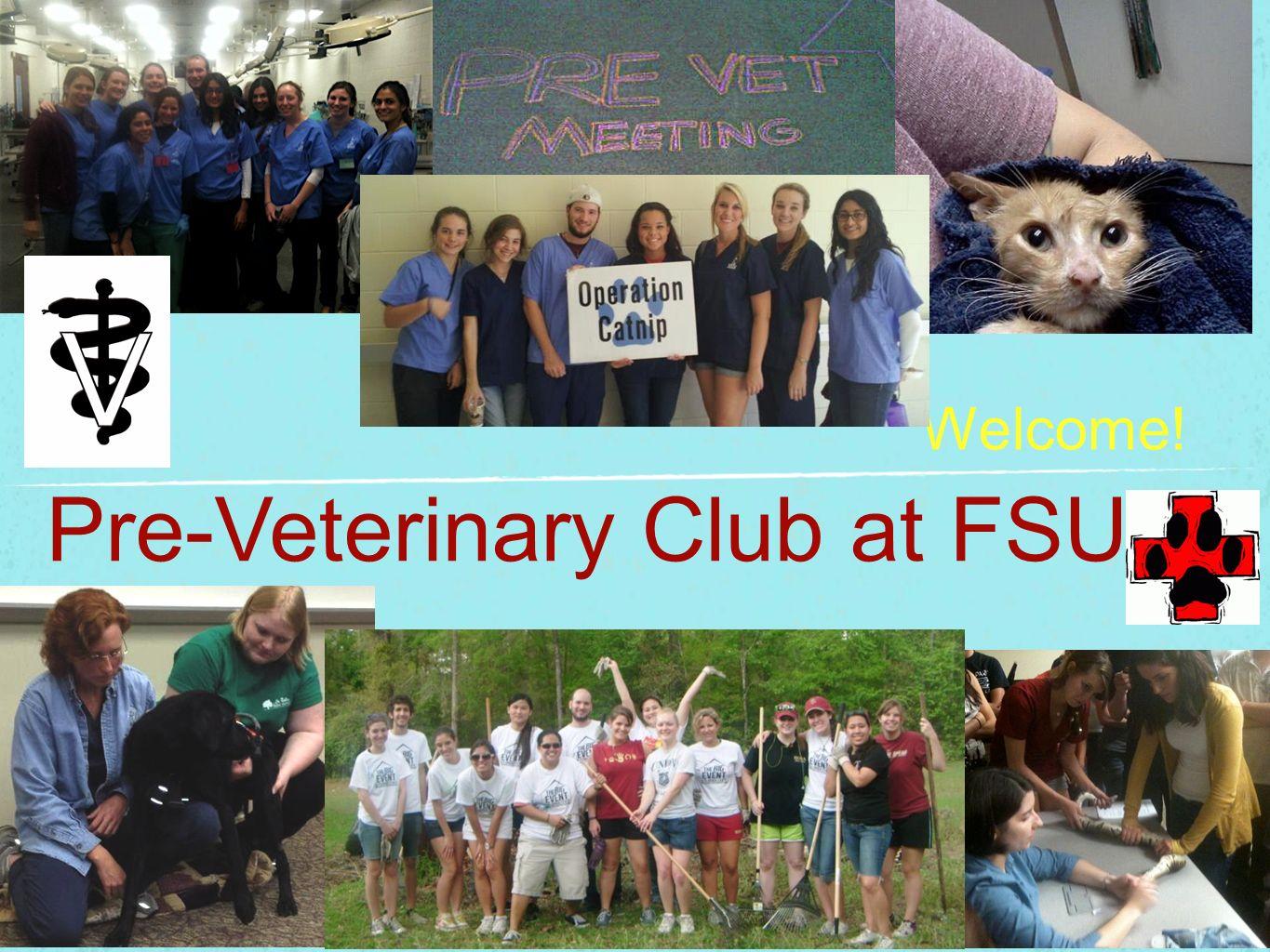 Pre-Veterinary Club at FSU!