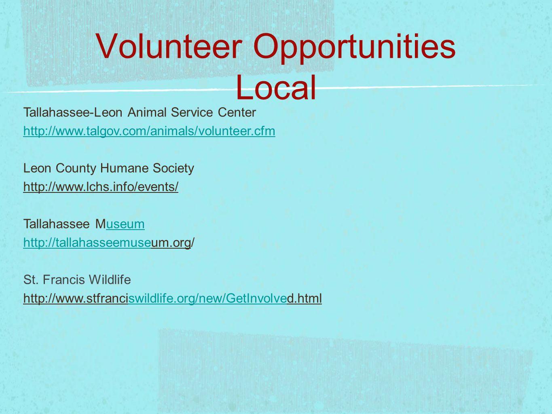 Volunteer Opportunities Local