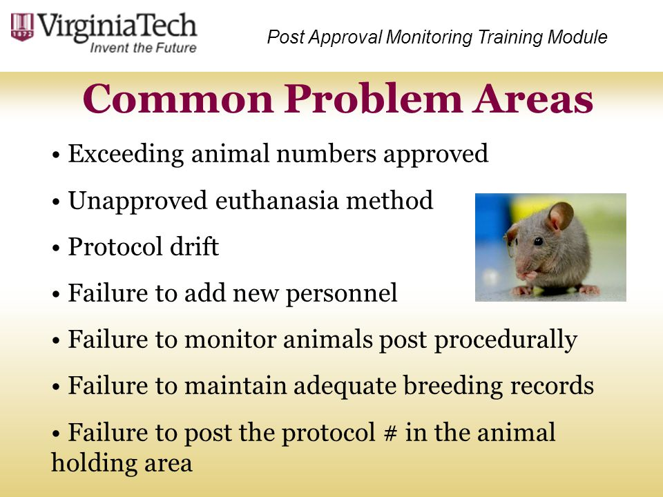 Common Problem Areas Exceeding animal numbers approved