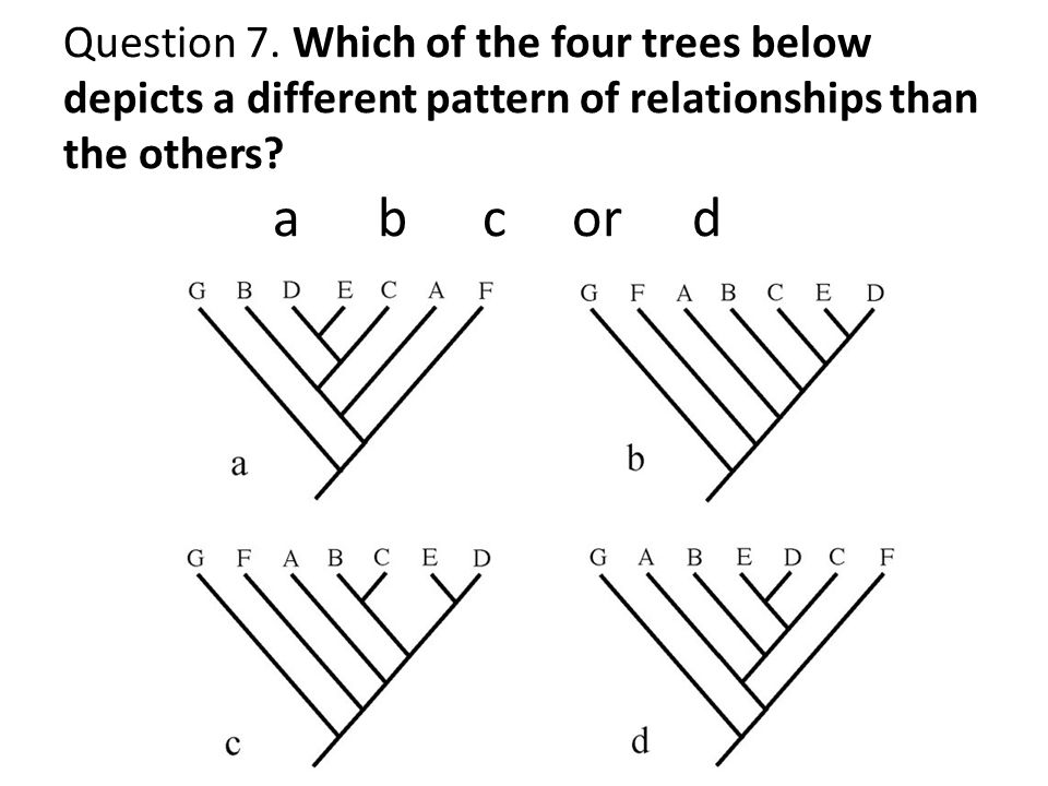 Question 7.