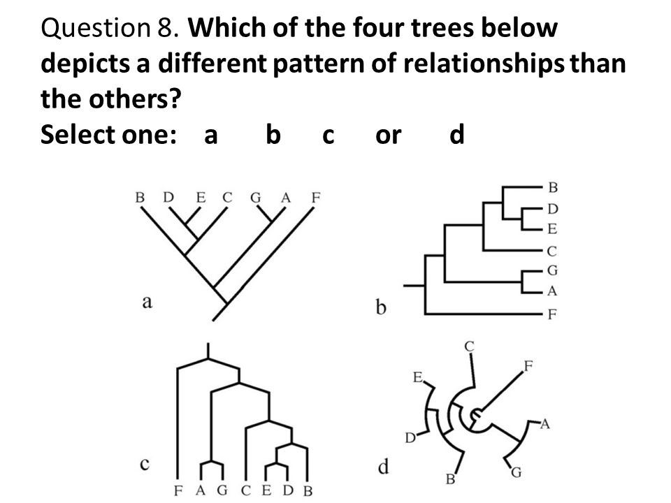 Question 8.