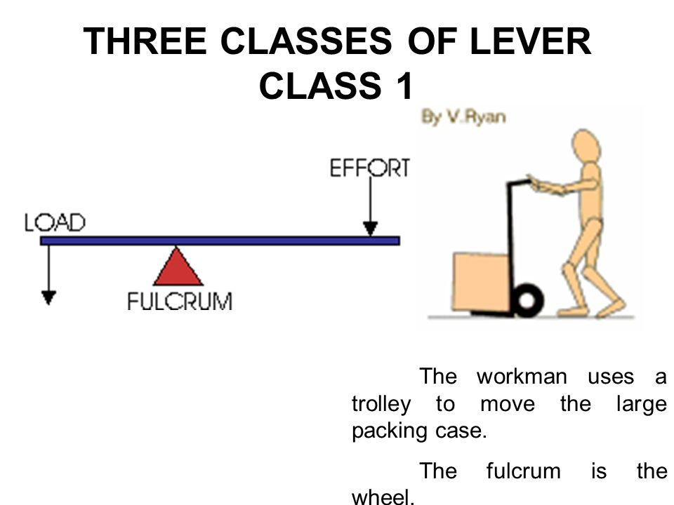 THREE CLASSES OF LEVER CLASS 1