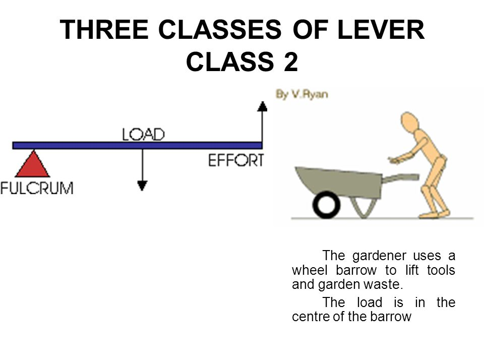 THREE CLASSES OF LEVER CLASS 2