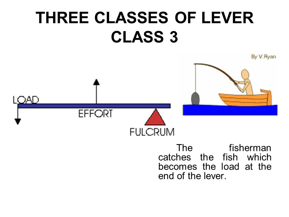 THREE CLASSES OF LEVER CLASS 3