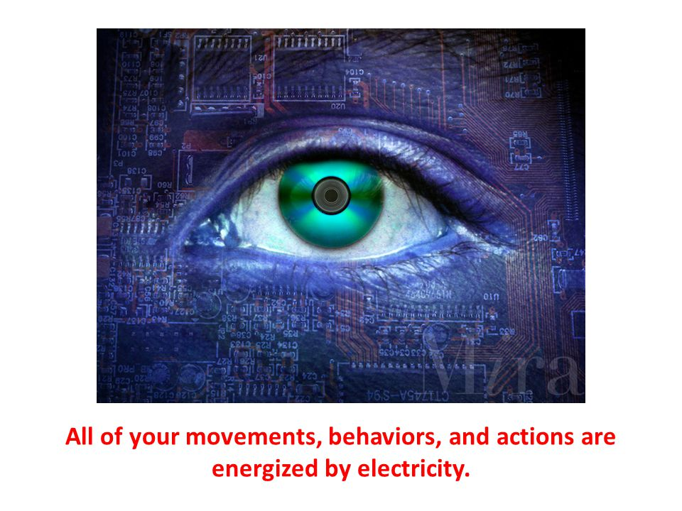All of your movements, behaviors, and actions are energized by electricity.