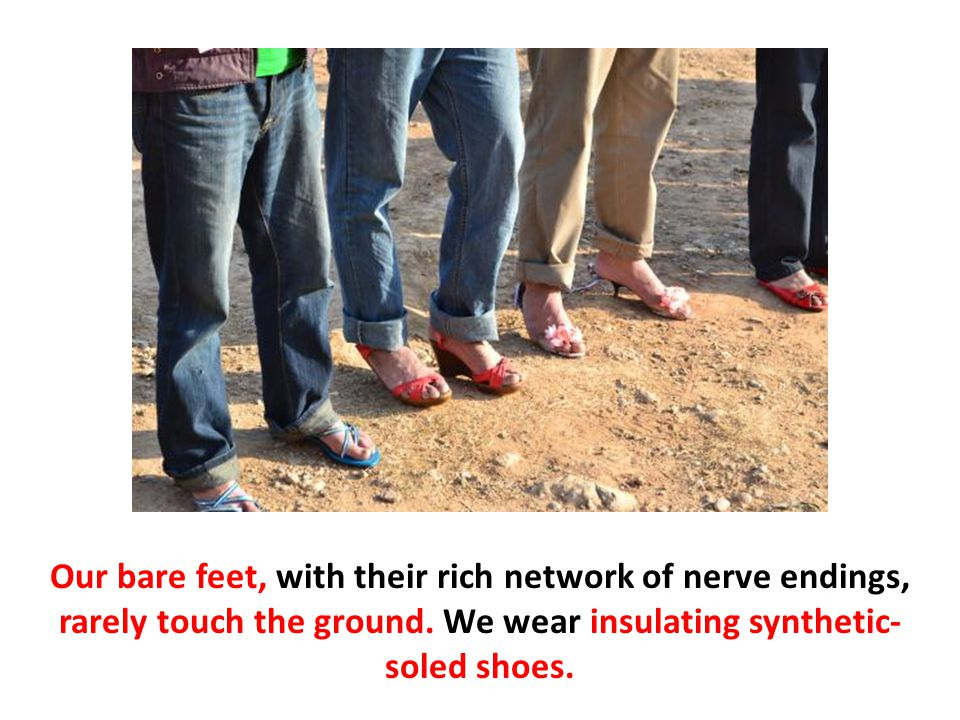 Our bare feet, with their rich network of nerve endings, rarely touch the ground.