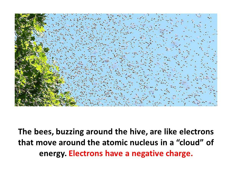 The bees, buzzing around the hive, are like electrons that move around the atomic nucleus in a cloud of energy.