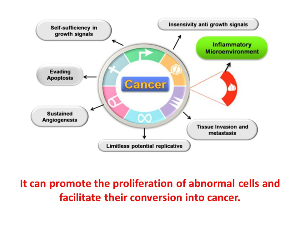 It can promote the proliferation of abnormal cells and facilitate their conversion into cancer.