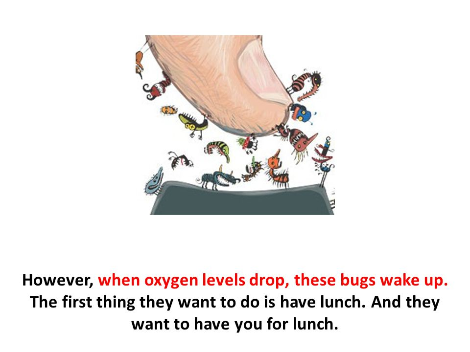 However, when oxygen levels drop, these bugs wake up