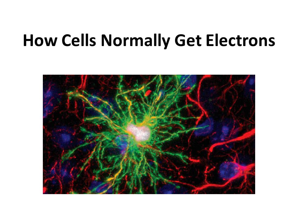 How Cells Normally Get Electrons