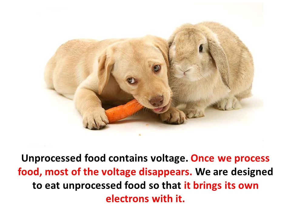 Unprocessed food contains voltage