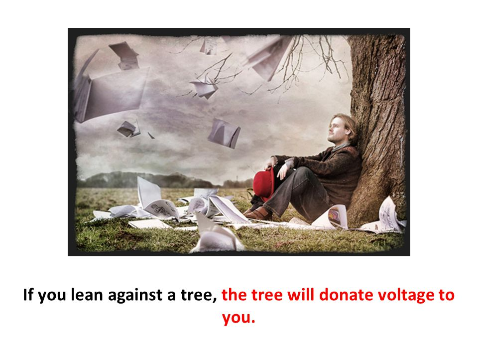 If you lean against a tree, the tree will donate voltage to you.