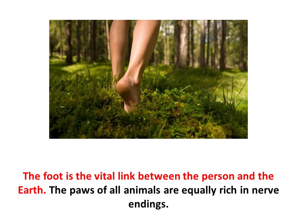 The foot is the vital link between the person and the Earth