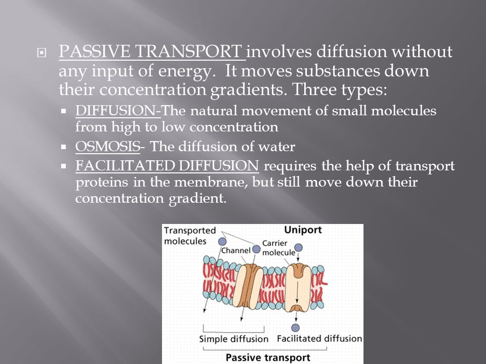 PASSIVE TRANSPORT involves diffusion without any input of energy