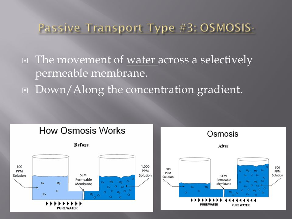 Passive Transport Type #3: OSMOSIS-