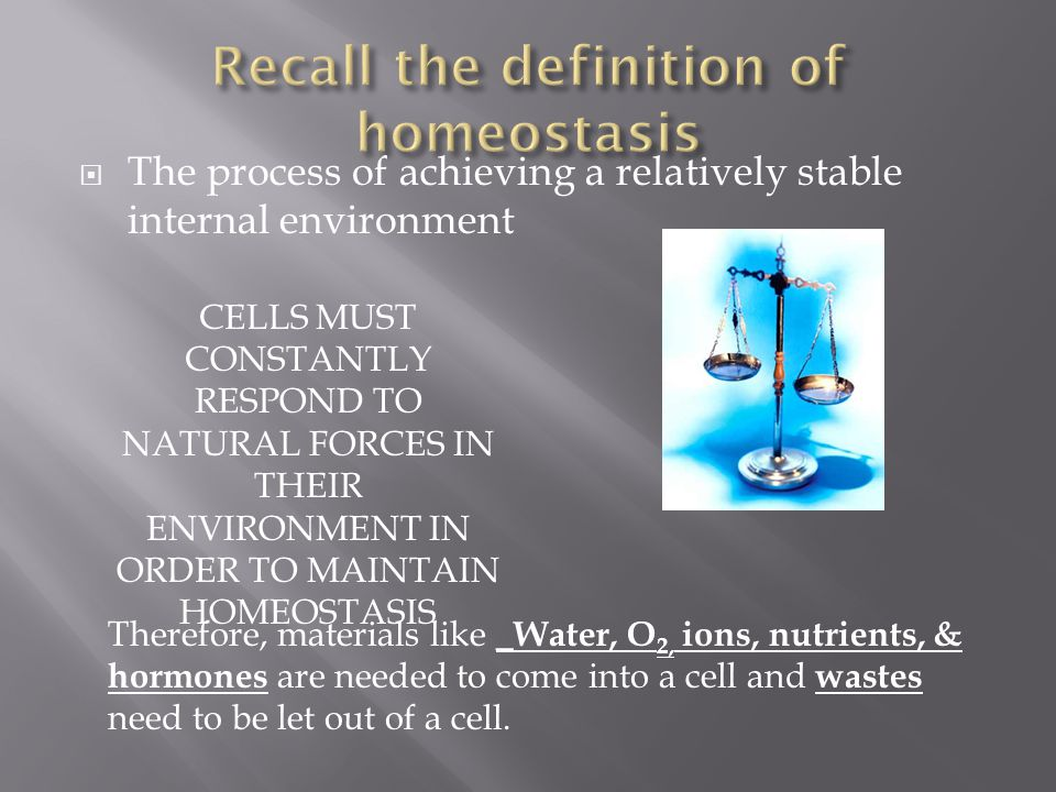 Recall the definition of homeostasis