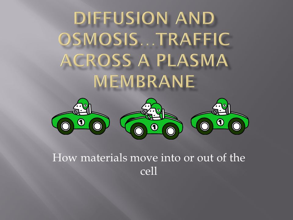 Diffusion and Osmosis…traffic across a plasma membrane