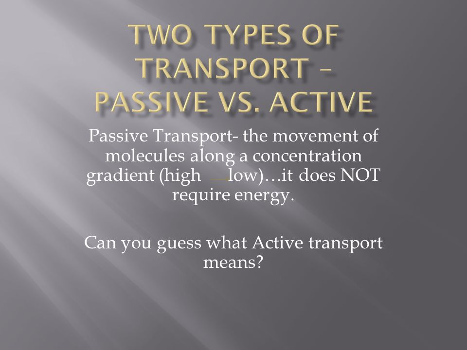 Two Types of Transport – Passive vs. Active