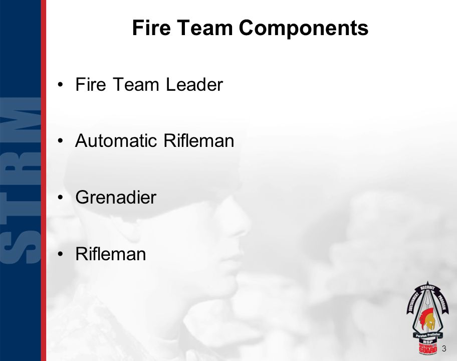 Fire Team Components Fire Team Leader Automatic Rifleman Grenadier
