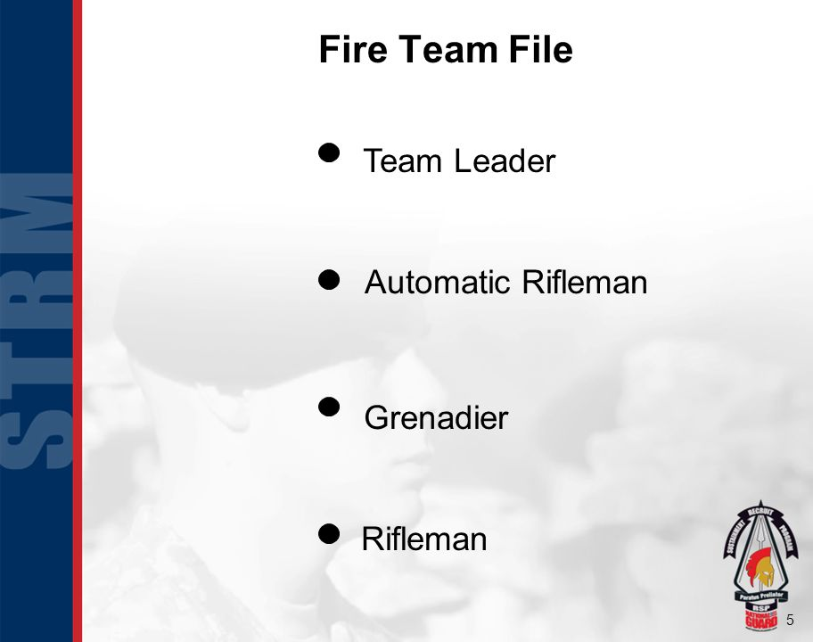Fire Team File Rifleman Automatic Rifleman Grenadier Team Leader