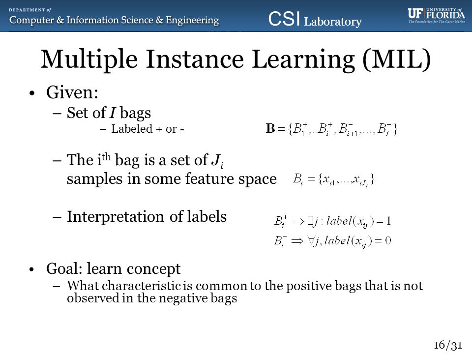 Multiple Instance Learning (MIL)