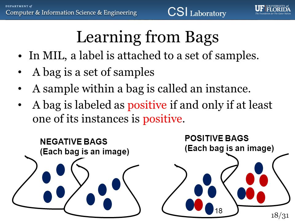 Learning from Bags In MIL, a label is attached to a set of samples.