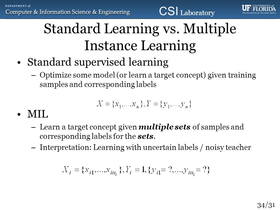 Standard Learning vs. Multiple Instance Learning