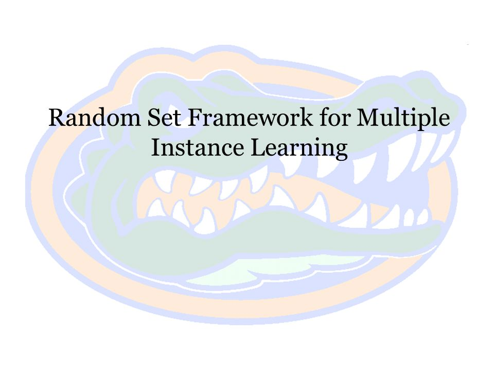 Random Set Framework for Multiple Instance Learning