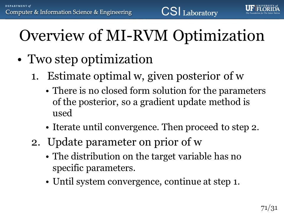 Overview of MI-RVM Optimization