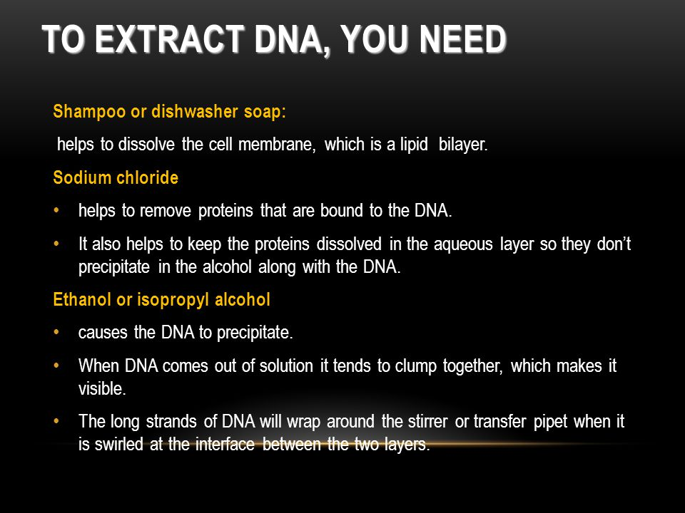 To Extract DNA, You need Shampoo or dishwasher soap: