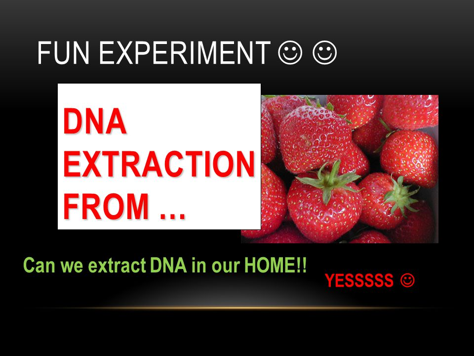 DNA Extraction from … Fun Experiment  
