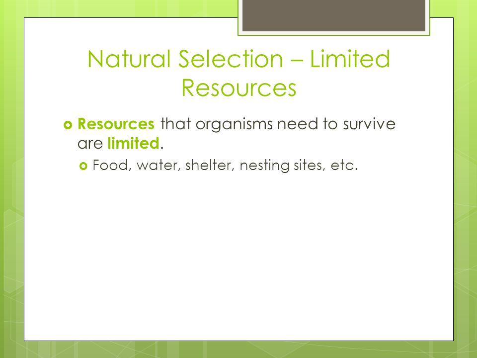 Natural Selection – Limited Resources