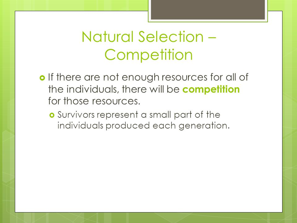 Natural Selection – Competition