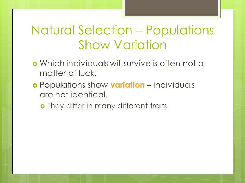 Natural Selection – Populations Show Variation