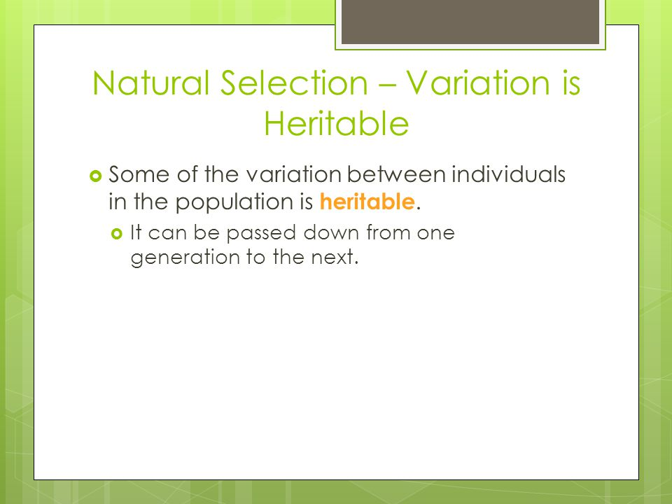Natural Selection – Variation is Heritable